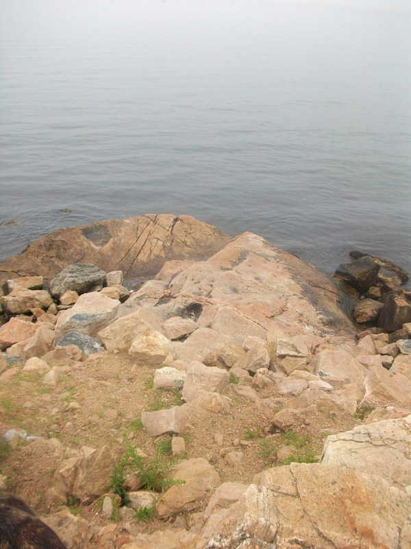 The promontory at the crest of the main trail affords scenic views of the rocky beach and Fishers Island Sound.