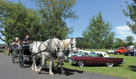 Foxglove Farm provided horse and wagon rides Sunday during the 19th Annual Harkness Family Day at Harkness Memorial State Park in Waterford. A classic car show was another feature of the annual event.
