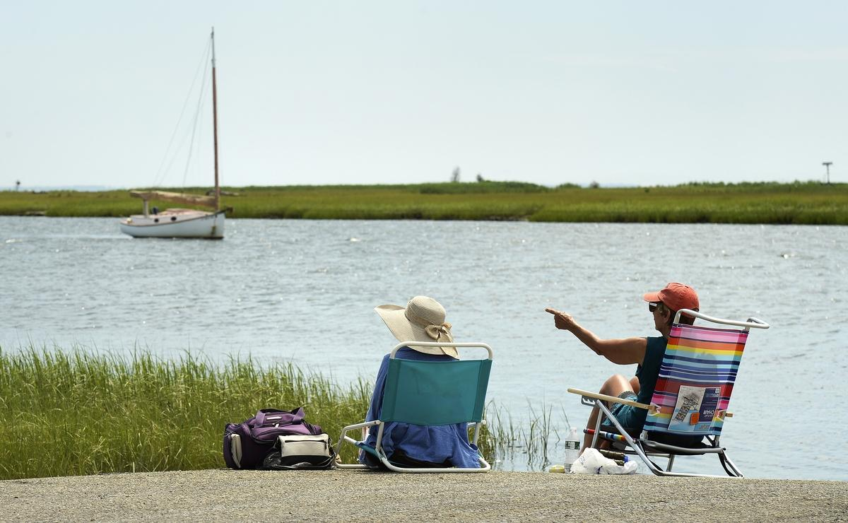Birdwatching in Old Lyme