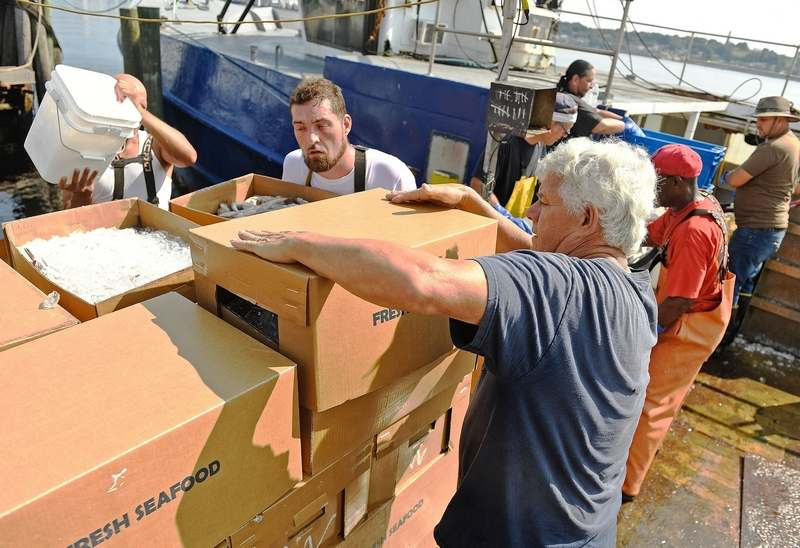 Gary Yerman, right, gives pointers on topping a box of fish to his new hires Thursday, July 15, 2021, at New London Seafood Distributors as workers unload the trawler Mystic Way at the dock in New London.  (Sean D. Elliot/The Day)